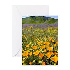 Shell Creek, California Greeting Card