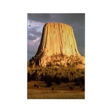 View of Devil's Tower, a basalt o Rectangle Magnet