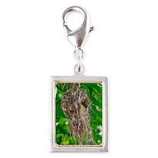 Seychelles sunbird nest Silver Portrait Charm