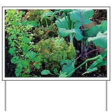 Vegetable garden Yard Sign