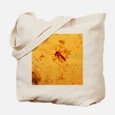 View of a mosquito fossilised in amber Tote Bag