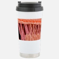 Sensory hair cells in ear, SEM Travel Mug
