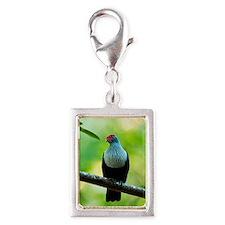 Seychelles blue pigeon Silver Portrait Charm