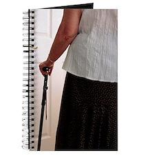 Using a walking stick Journal