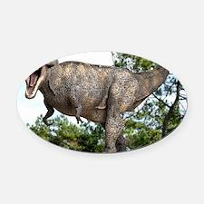 Tyrannosaurus rex dinosaur Oval Car Magnet