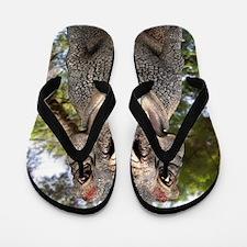 Tyrannosaurus rex dinosaur Flip Flops