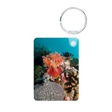 Sea apple Keychains