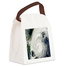Typhoon Tokage Canvas Lunch Bag