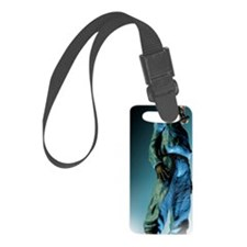 Isolation suit Luggage Tag