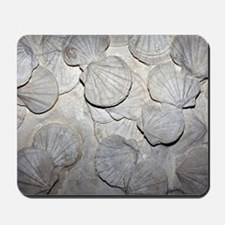 Scallop fossils Mousepad