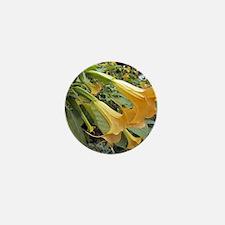Trumpet tree flowers Mini Button