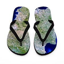 True-colour satellite image of southwes Flip Flops