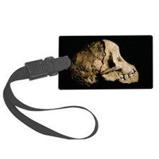 Tuang child skull Luggage Tag