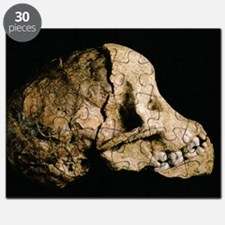 Tuang child skull Puzzle