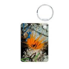 Tube anemone Keychains