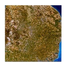 True-colour satellite image of East A Tile Coaster