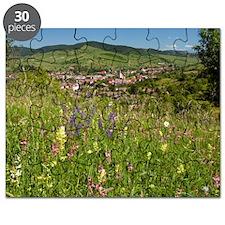 Romanian village Puzzle