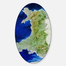 True colour satellite image of Wale Sticker (Oval)