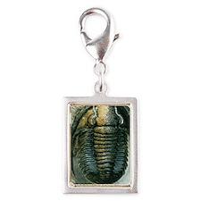 Trilobite fossil Silver Portrait Charm