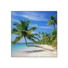 "Tropical beach Square Sticker 3"" x 3"""