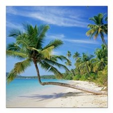 "Tropical beach Square Car Magnet 3"" x 3"""