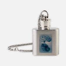 Human brain, artwork Flask Necklace