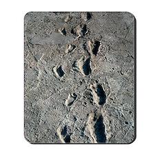 Trail of Laetoli footprints Mousepad