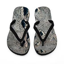 Trail of Laetoli footprints Flip Flops