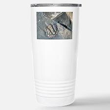 Trilobite fossil Travel Mug