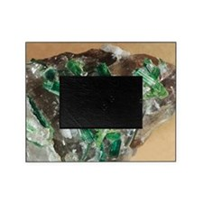 Tourmaline crystals in quartz Picture Frame