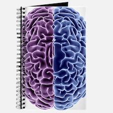 Human brain, computer artwork Journal