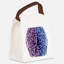 Human brain, computer artwork Canvas Lunch Bag