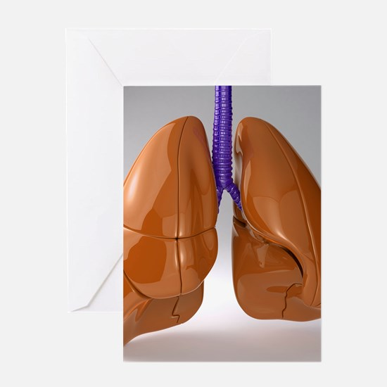 Respiratory system, artwork Greeting Card