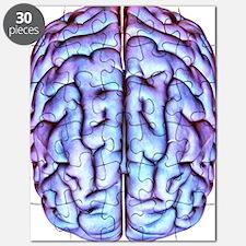 Human brain, artwork Puzzle