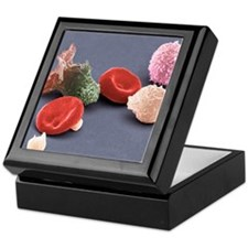 Human blood cells, SEM Keepsake Box