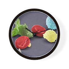 Human blood cells, SEM Wall Clock