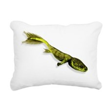 Tiktaalik prehistoric fi Rectangular Canvas Pillow