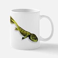 Tiktaalik prehistoric fish, artwork Small Small Mug