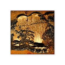 """Tiger ironstone with dendri Square Sticker 3"""" x 3"""""""