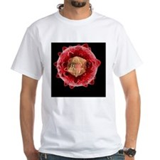 Hepatitis C virus, artwork Shirt