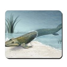 Tiktaalik prehistoric fish, artwork Mousepad
