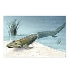Tiktaalik prehistoric fis Postcards (Package of 8)