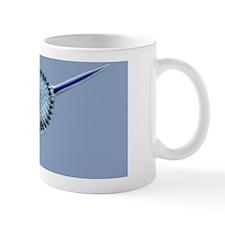 Radiolarian, light micrograph Mug