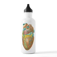 Heart anatomy, artwork Water Bottle