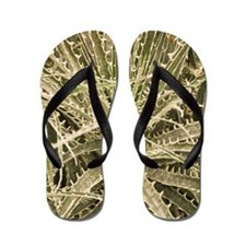 Puya gilmartiniae Flip Flops