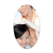 Head lice examination Oval Car Magnet
