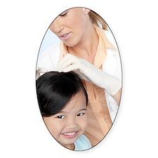 Head lice examination Decal