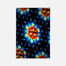 Quantum waves in topological insu Rectangle Magnet