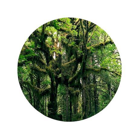 "Temperate rainforest 3.5"" Button"