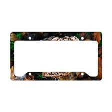 Podoscypha fungus License Plate Holder